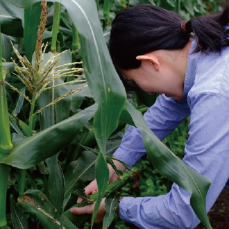 農業をして働くための実地研修